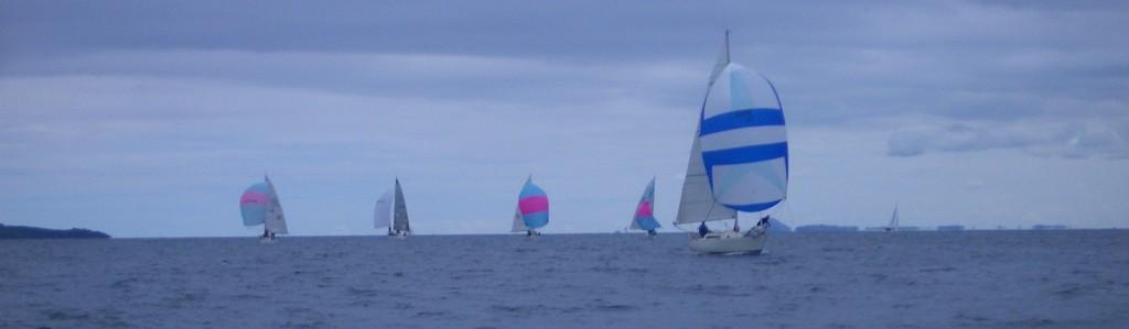 The fleet approaching - photo Adrian Shield