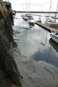 General view of mud up inside pontoon