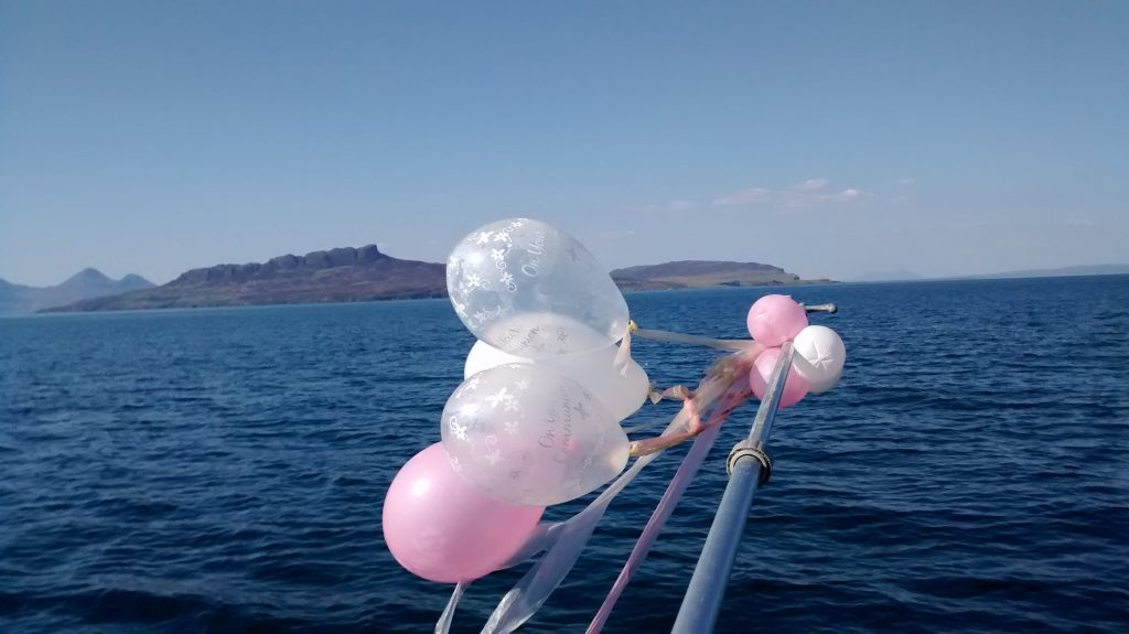 Tasty jellyfish? No - balloons recovered from the sea between Ardnamurchan and Eigg, May 2016. (Photo H Sillitto)