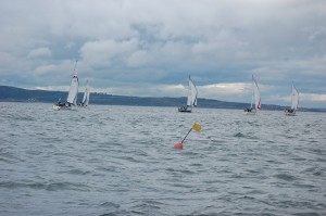 Orkney Race Start 2015 Division 1